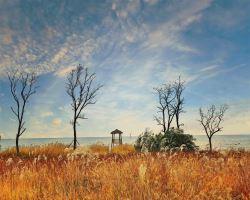 黄金海岸保护区