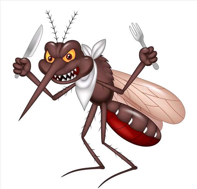 蚊子能飞多高,买房买