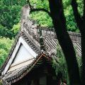 武夷精舍Wuyi
